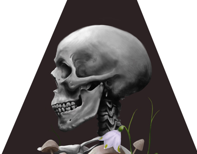 Skull (Digital Painting)