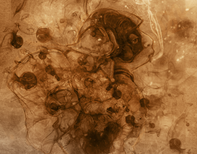 Hoploid Transposition // Digital Illustration