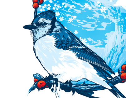 The Bluebird Illustration