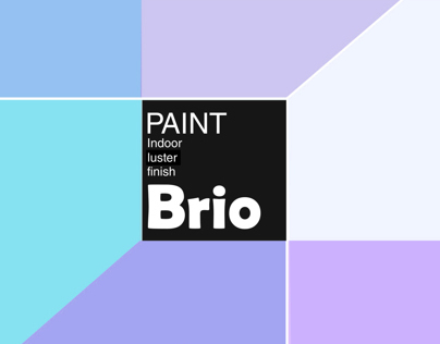 Brio paint package