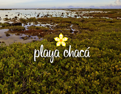 Playa Chacá web
