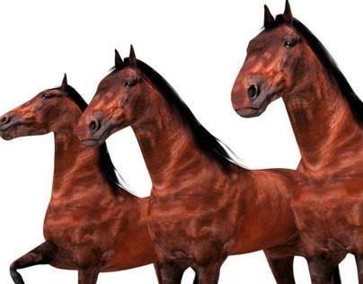 Rigged Horse - Animal 3D Model for Sale - 3D Squirrel