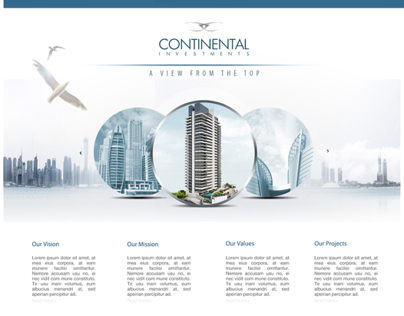Continental Investments - Web Design