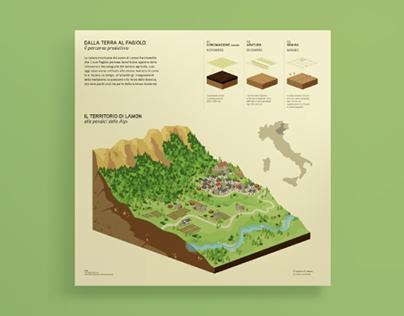 Advanced infodesign for agriculture — Fagiolo di Lamon
