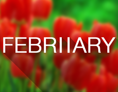 2th February 5th May Months (Dribbble Rebound)