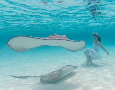Stingrays and a Girl
