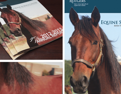 Rutgers Equine Science Center Annual Report 2013