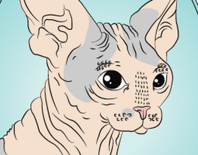 Hairless Cat Doodles