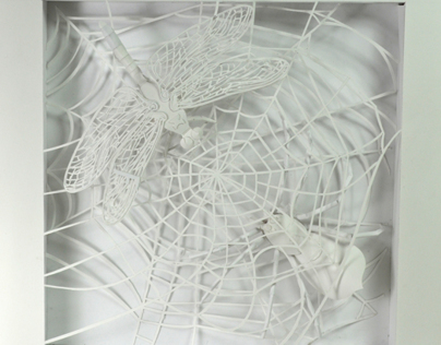 Paper Sculpture - Spider & Dragonfly