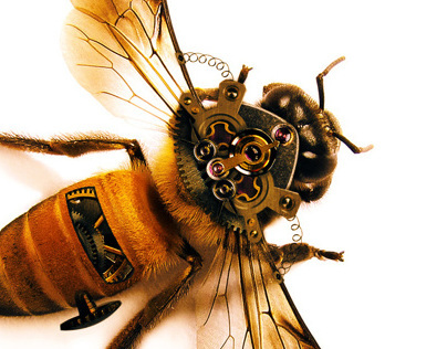Steampunk Bee