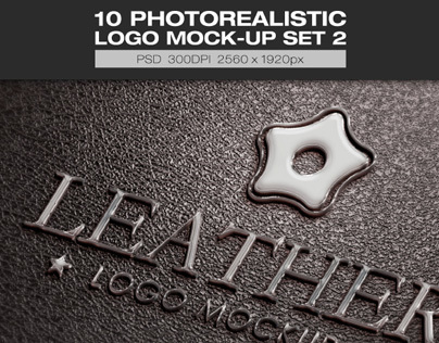 10 Photorealistic Logo Mock-up Set 2