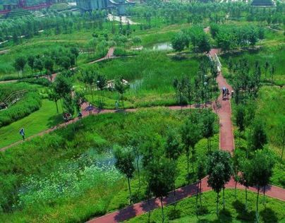 Tianjin Wetland Park; China - 天津侨园