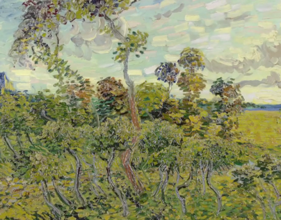 A new Van Gogh discovery: Sunset at Montmajour