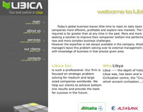 LIBICA WEBSITE DESIGN