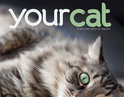 Your Cat Magazine Redesign