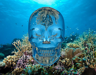 Skull Barrier Reef