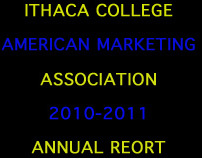 ICAMA Annual Report 2010-2011