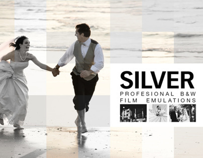 Silver 28 B&W Film Emulations