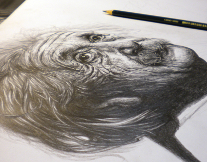 Drawing Einstein