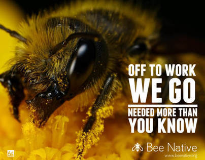 Bee Native non-profit