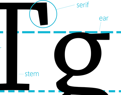 Anatomy of Typography App
