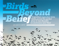 Birds Beyond Belief