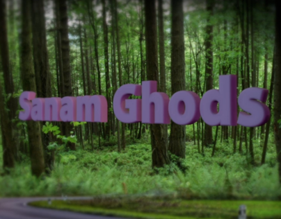 Demo-reel-sanam ghods