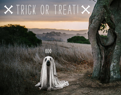 Halloween-themed Photoshoot
