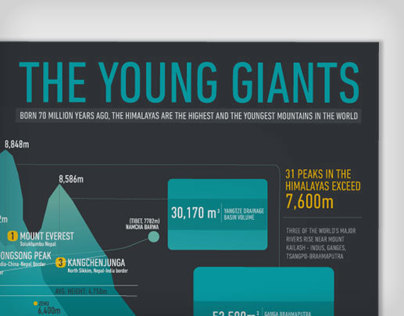 The Young Giants- Information Design