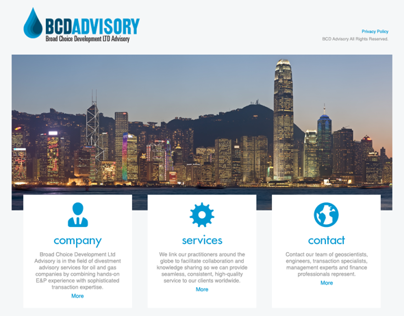 BCD Advisory – Website