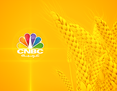 CNBC : Commodities FIller