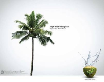 Kerala coconut development board Campaign