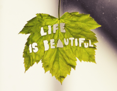 Life is Beautiful - Typographic Experiment