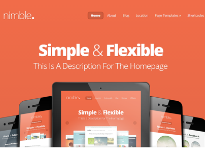 Nimble - Simple & Flexible WP Theme