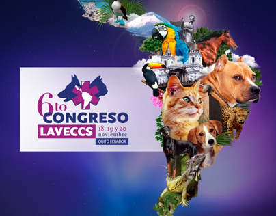 6to Congreso LAVECCS