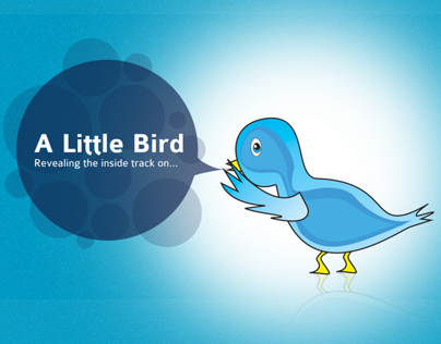 A Little Bird Branding and Responsive Website