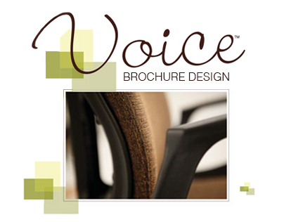 Voice Brochure Design