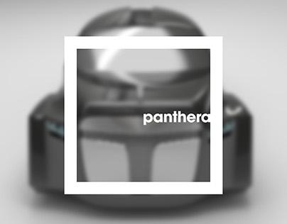 Panthera Explained