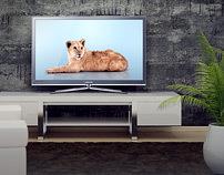 Samsung / LED TV digital campaign