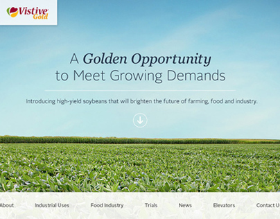 Vistive Gold Website