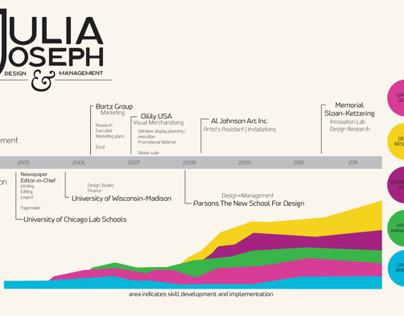 Infographic CV (2010)