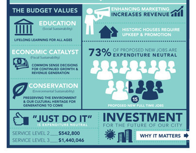 Budget Infographic