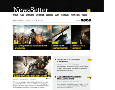 NewsSetter WordPress Theme