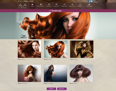 Web Site Hairdresser, Hair Salon