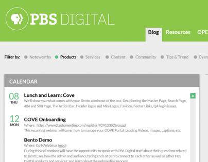 PBS Digital Brand