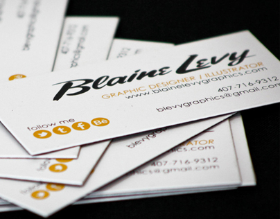 Blaine Levy Graphics Identity