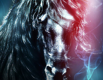 Happy Year of the Horse 2014