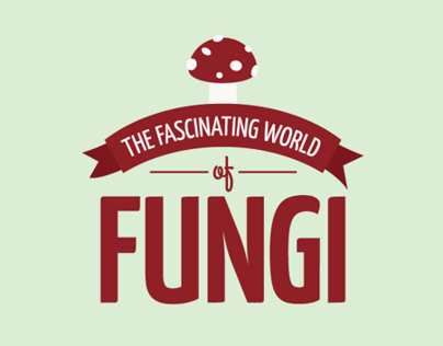 The Fascinating World of Fungi