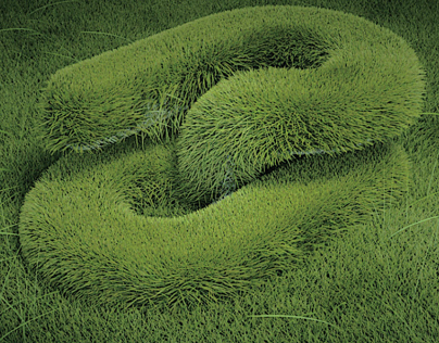Visual Experiment - Grass