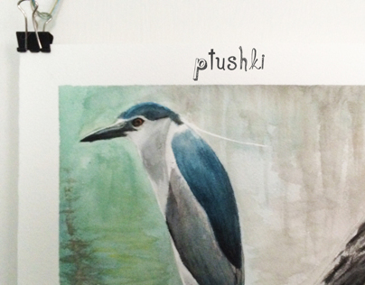 Ptushki
